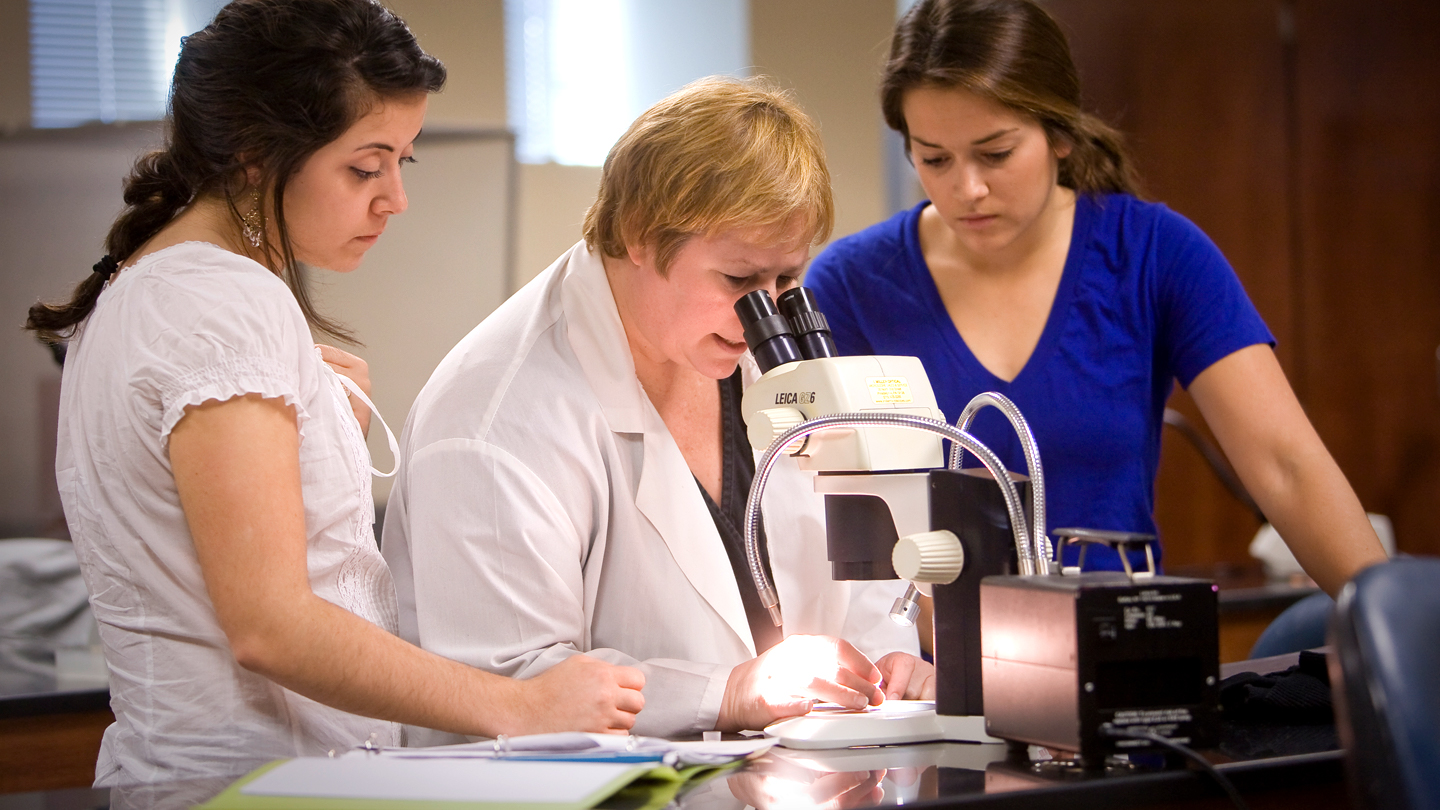 Prof. Elaine R Reynolds teaches a lab in Oechsle where students use microscopes to work with leach ganglia.